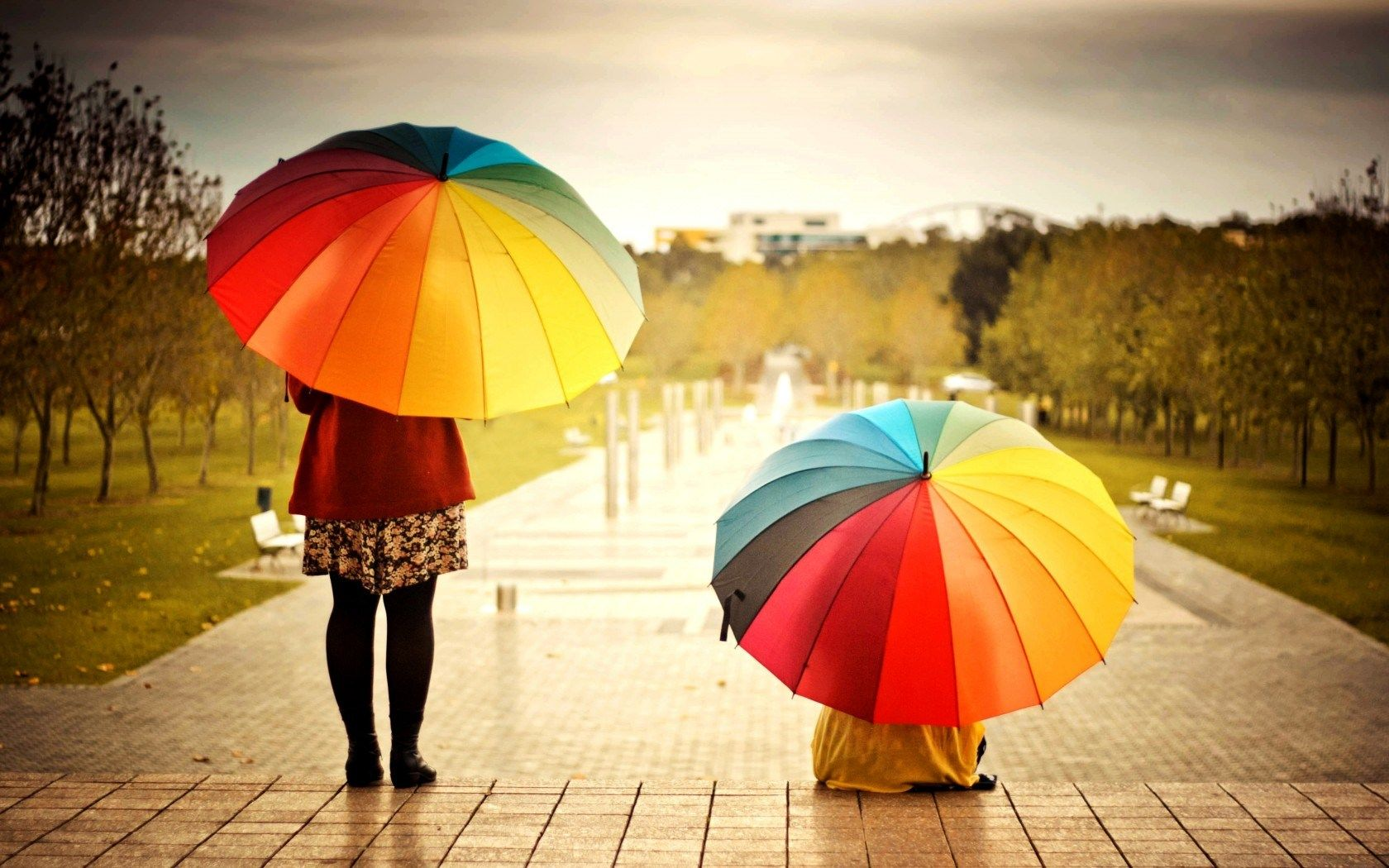 Umbrellas – cheap fashion accessories Do you know what is your ... for Colorful Umbrella Photography  67qdu