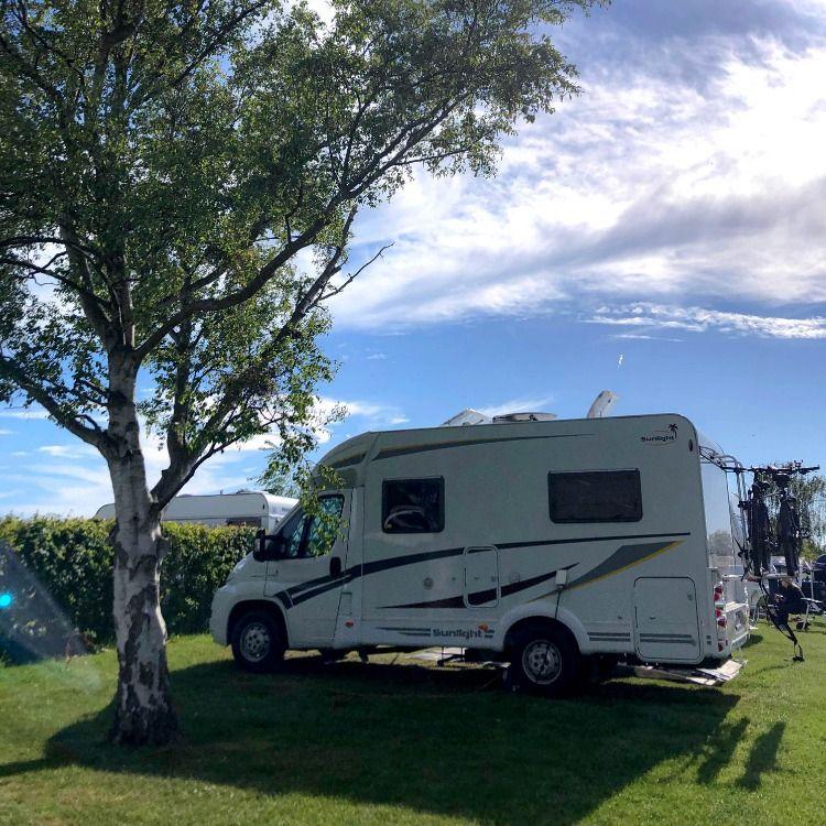 Urlaub Mit Hund Campingplatz Ostsee Katharinenhof In 2020 Hundedusche Urlaub Mit Hund Campingplatz