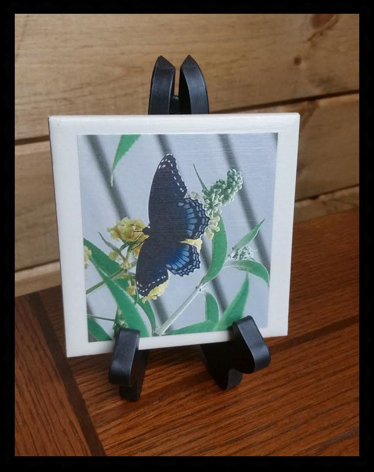 Decorative 4X4 Ceramic Tiles Stunning Home Decor Blue Butterfly Decorative Ceramic Tile 1  4X4 With Inspiration