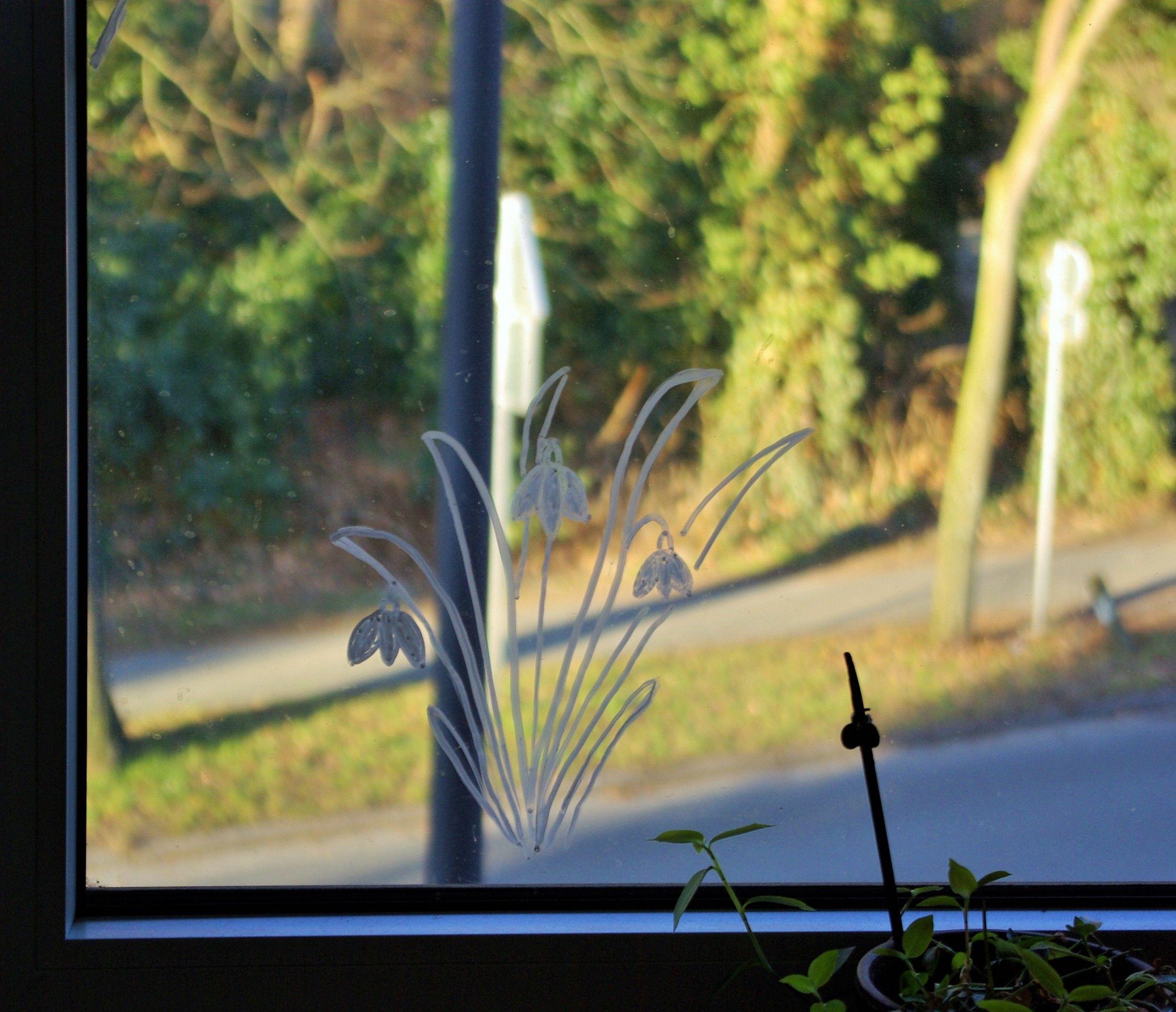 Kuchenfenster Schneeglockchen Mit Kreidemarker Aufs Fenster Gemalt Liess Sich Total Einfach Mit Trockenem Kuchen Schneeglockchen Kuche Fenster Kuchenfenster