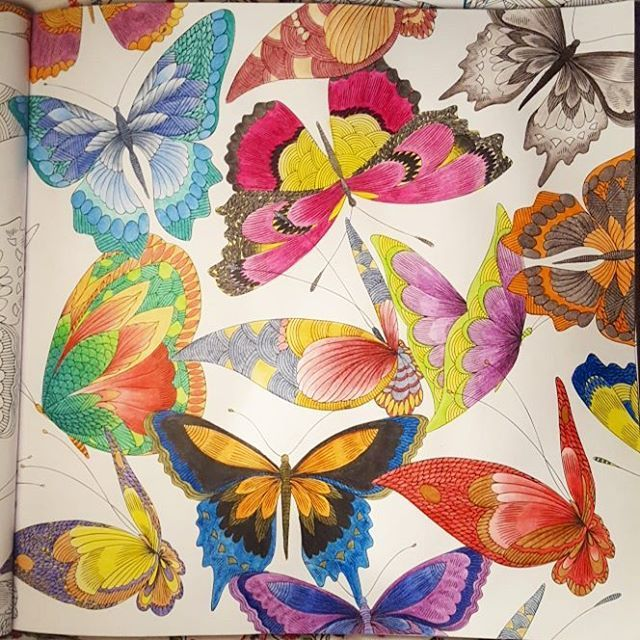 #milliemarottastropicalwonderland #adultcoloringbook #arttherapy #milliemarotta #Derwent #Inktense #tropicalwonderland #tropicalwonderlandcoloringbook#tropicalwonderlandcolouringbook