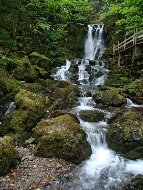 Fundy in Canada | See More Pictures | #SeeMorePictures