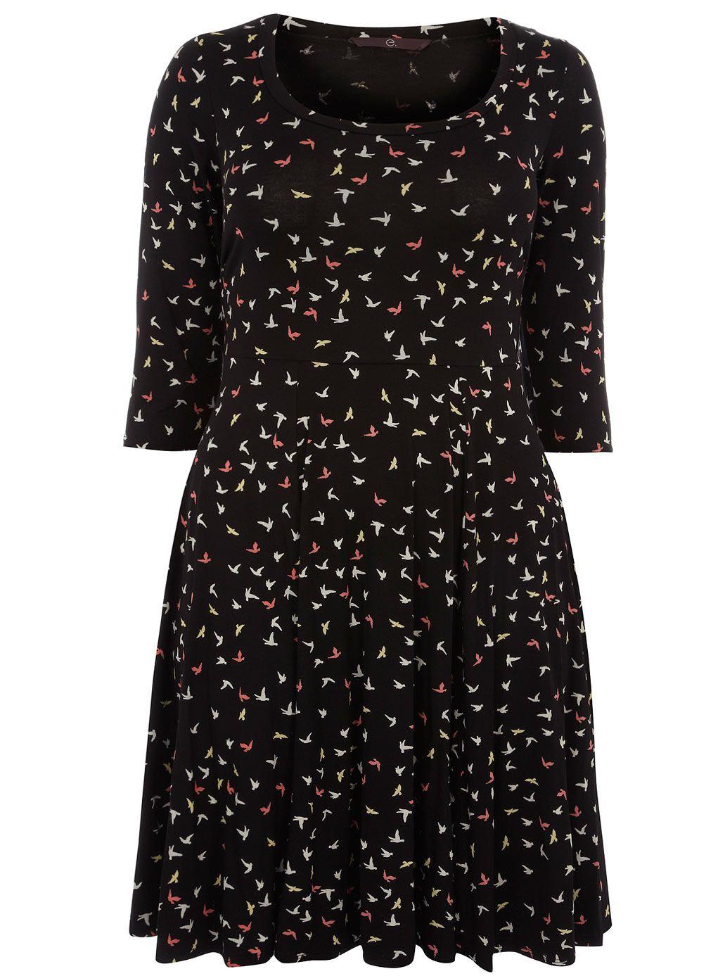 f657041786 Evans Bird Print Skater Dress | EVANS (UK) & MONSOON