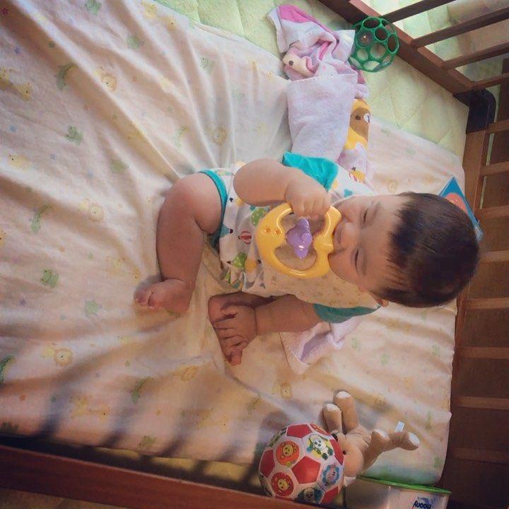 #10ヶ月 #赤ちゃん #笛 #笛のおもちゃ #10monthbaby #10ヶ月赤ちゃん #0歳 #flute #whistle #赤ちゃんのおもちゃ #babytoys #10,#10monthbaby,#10,#0,#flute,#whistle,#babytoys