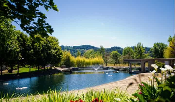 The Water Oasis - Venue - Newberg, OR - WeddingWire ...