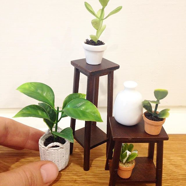Plant style. Featuring Miniature Co. Plant stands in waltnut, White Vase and Various Plants. Online now at Miniature Co.