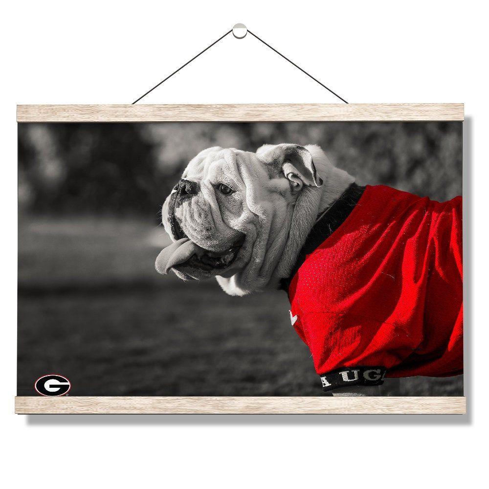 Georgia Bulldogs Uga Poised Hanging Canvas Uga X Uga Football Sanford Stadium College Mascot Georgia In 2020 Georgia Bulldogs Uga Football Hanging Canvas