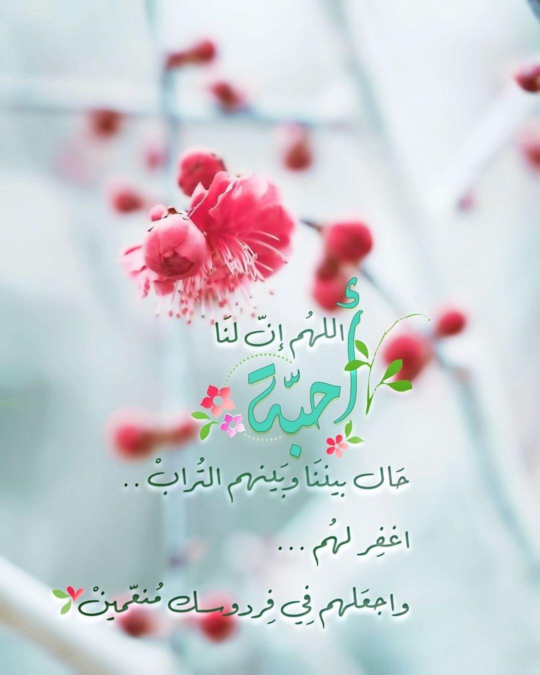 اللهم أرحم أموات المسلمين Quran Quotes Inspirational Islamic Pictures Words Quotes