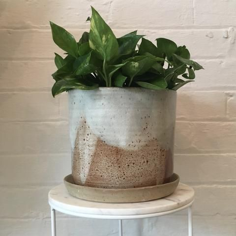 Leaf And Thread Glacier Stoneware Planter Saucer Pottery