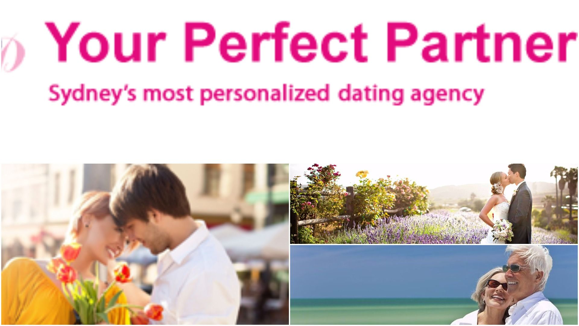Perfect partner dating agency