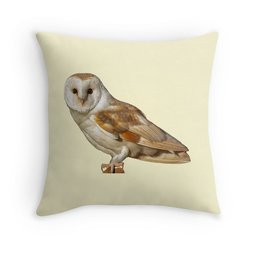 English Barn Owl Throw Pillow By David Knowles Owl Occasions Barn Owl Owl Throw Pillows Owl