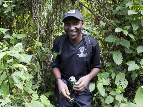 Dr Eddy Kambale Head Field Veterinarian In Drc For More About
