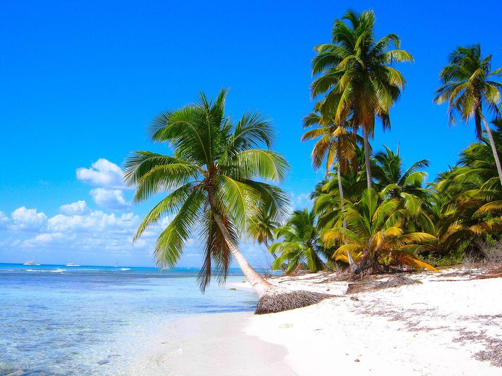 Paradiso Republic Dominica By Andrea Pucci Saona Island Caribbean Beaches Beach