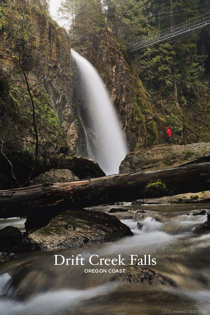 Drift Creek Falls Hike Lincoln City Oregon Coast Local Adventurer Fall Hiking Oregon Coast Oregon Hikes