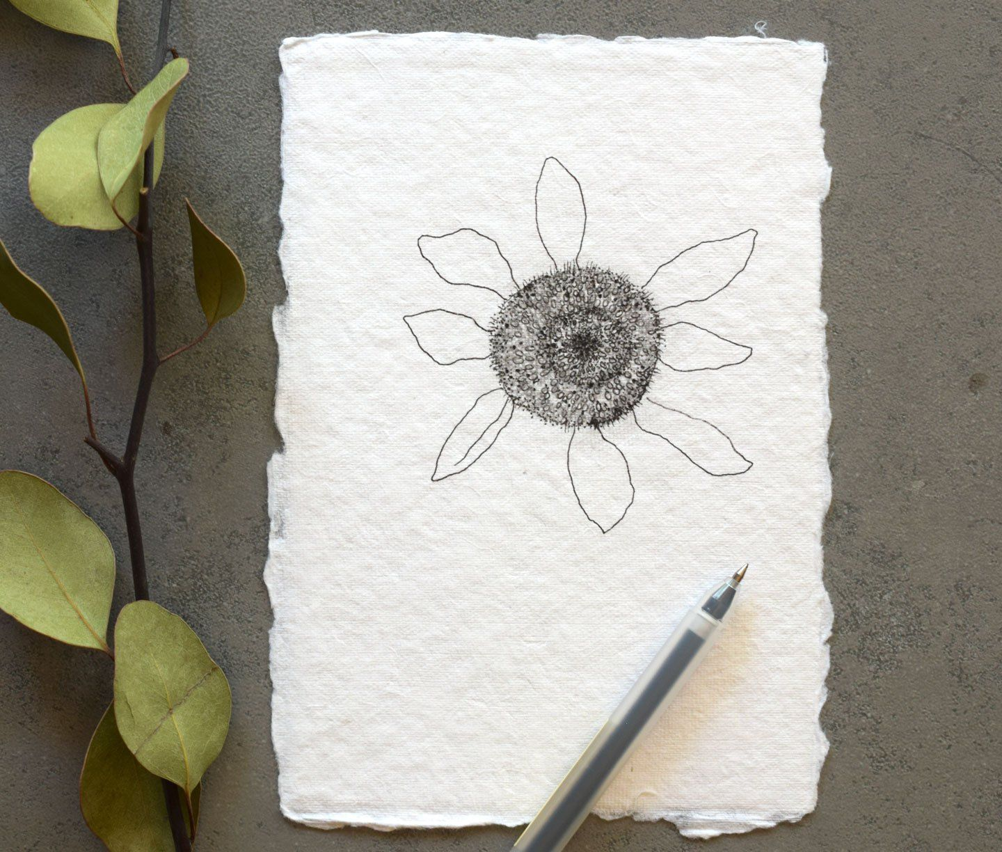 How to Draw Flowers Part 3: Sunflower – The Postman's Knock