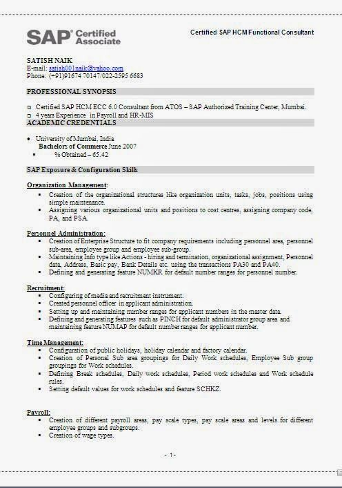 curriculum vitae template ireland Sample Template Example of - sap functional consultant sample resume