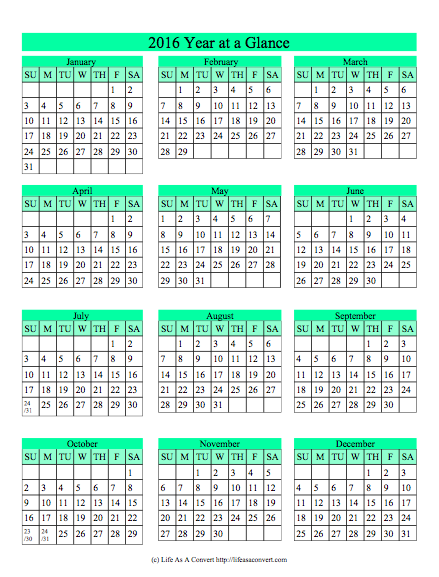 image relating to Homeschool Calendar Printable titled 2016 12 months at a Appear Homeschool Calendar Printable Absolutely free