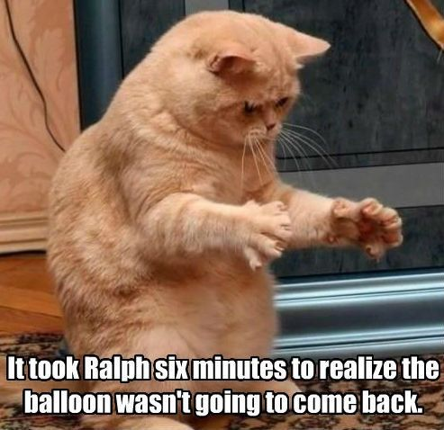 it took ralph six minutes to realize the balloon wasn't going to come back.