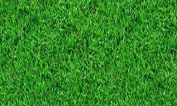 خامات فوتوشوب Mix Art Landscape Design Lawn Fast Growing Plants