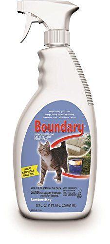Lambert Kay Boundary IndoorOutdoor Cat Repellent Pump Spray 22Ounce -- This is an Amazon Affiliate link. To view further for this item, visit the image link.