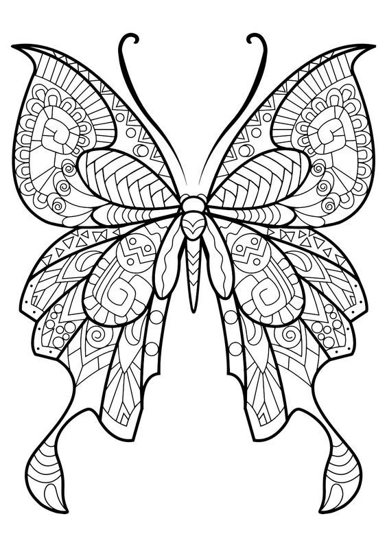 Adult Butterfly Coloring Book Butterfly Coloring Page Butterfly