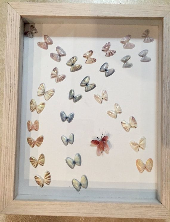 Coquina shell framed butterfly art piece hand crafted for Shell art and craft