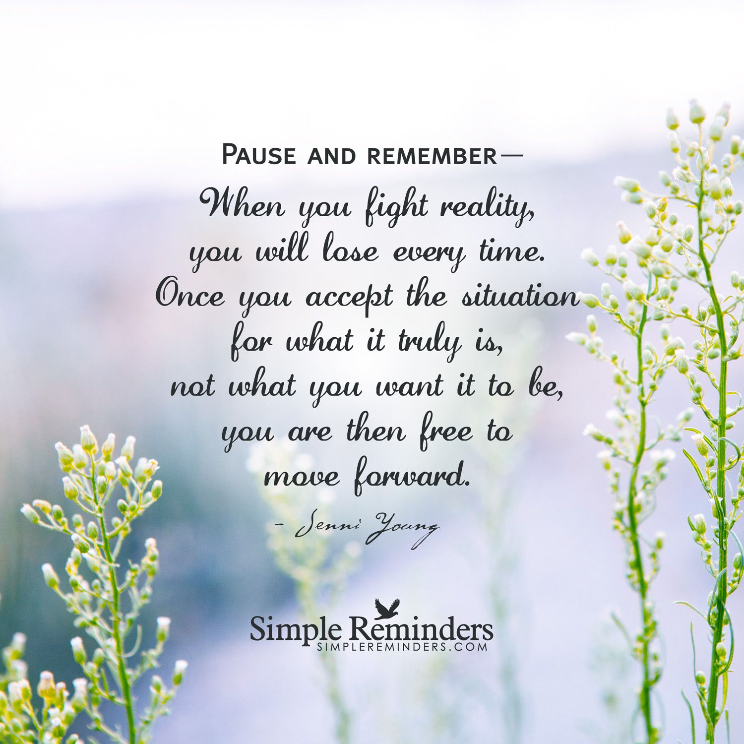 Accept The Situation And Move Forward Pause And Remember