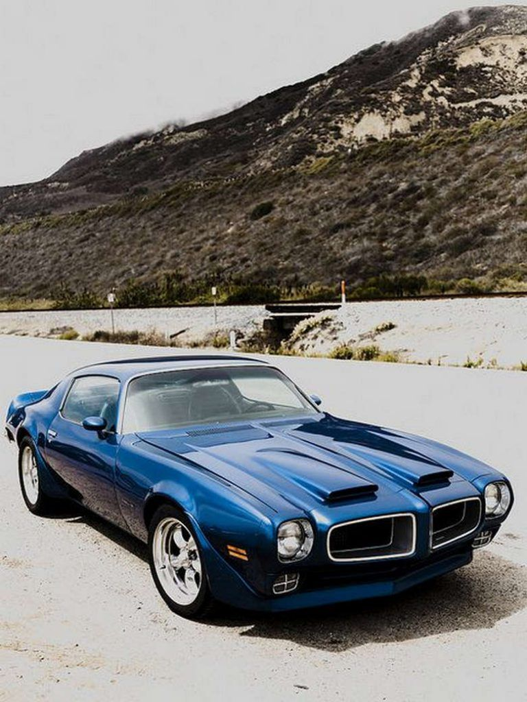 afternoon drive: american muscle cars (25 photos) | muscles, cars