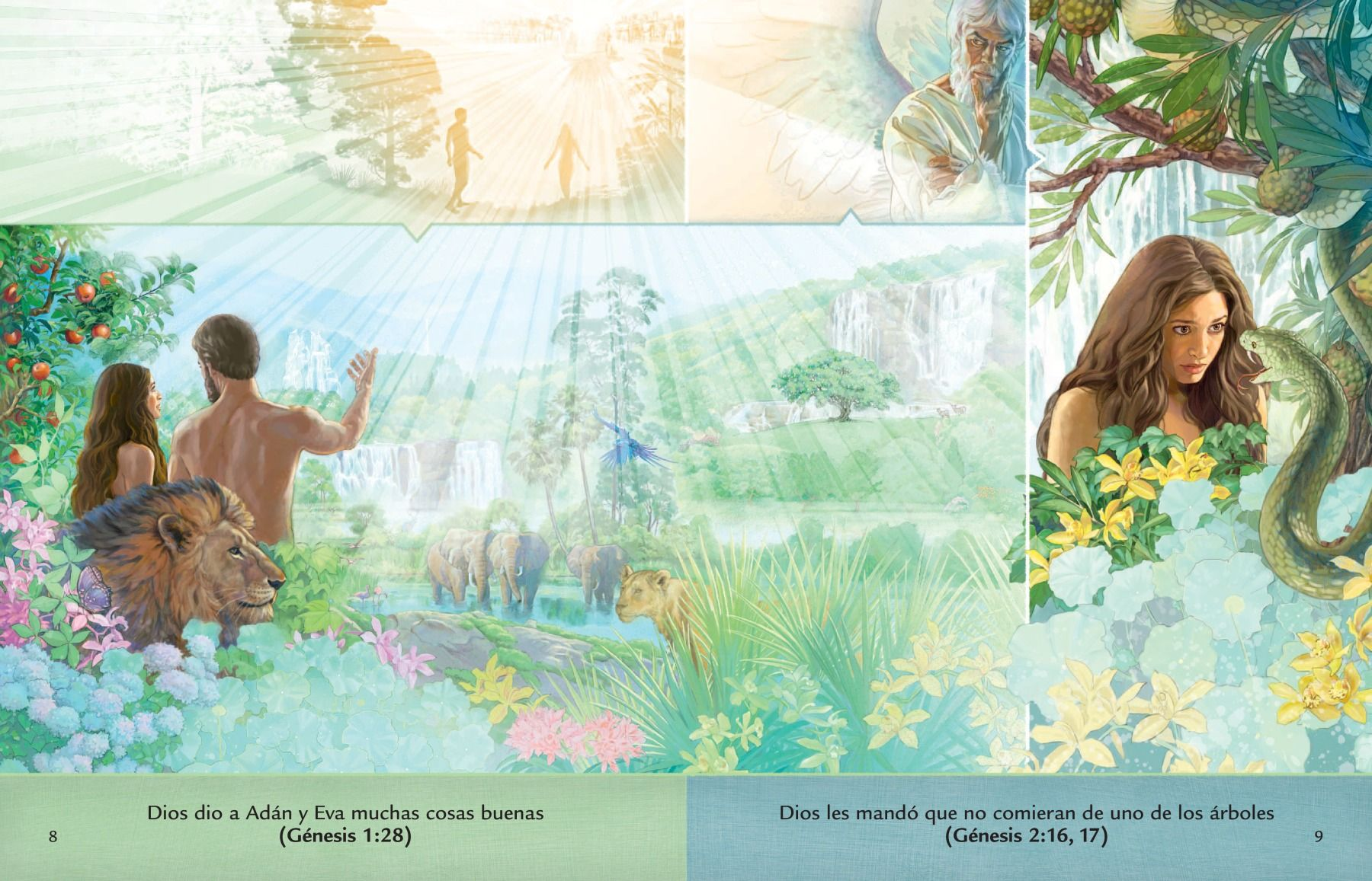 La Lección Del Folleto Escuche A Dios Sobre Adán Y Eva En El Jardín De Edén Adan Y Eva Folletos Ilustraciones