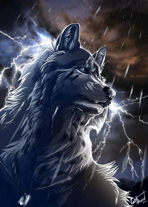 Black Wolf Fantasy Wolf Wolf Art Wolf Artwork