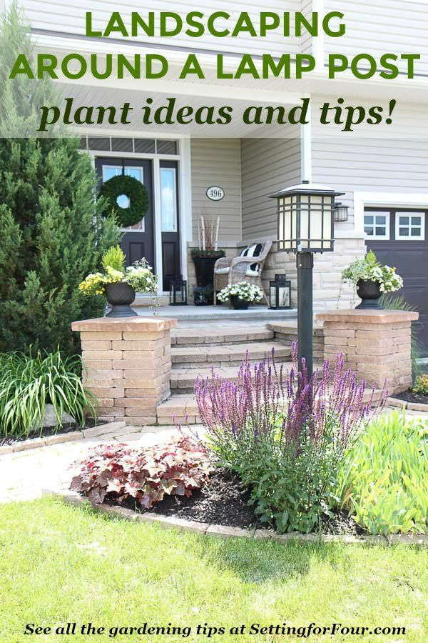Learn Helpful Landscaping Tips And Tricks To Hide A Lamp Post In The Front Yard See The Types Of Plants And Flow Landscape Plans Backyard Landscaping Backyard