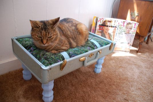 DIY: How to make a suitcase cat bed