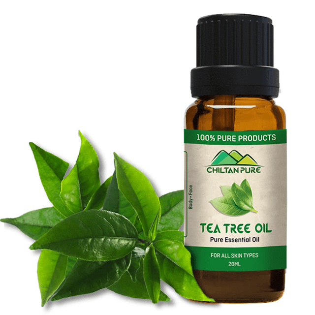 Natural Home Remedies To Get Rid Of Acne Fast In 2020 Tea Tree Oil Tea Tree Oil Skin Tea Tree Oil Shampoo