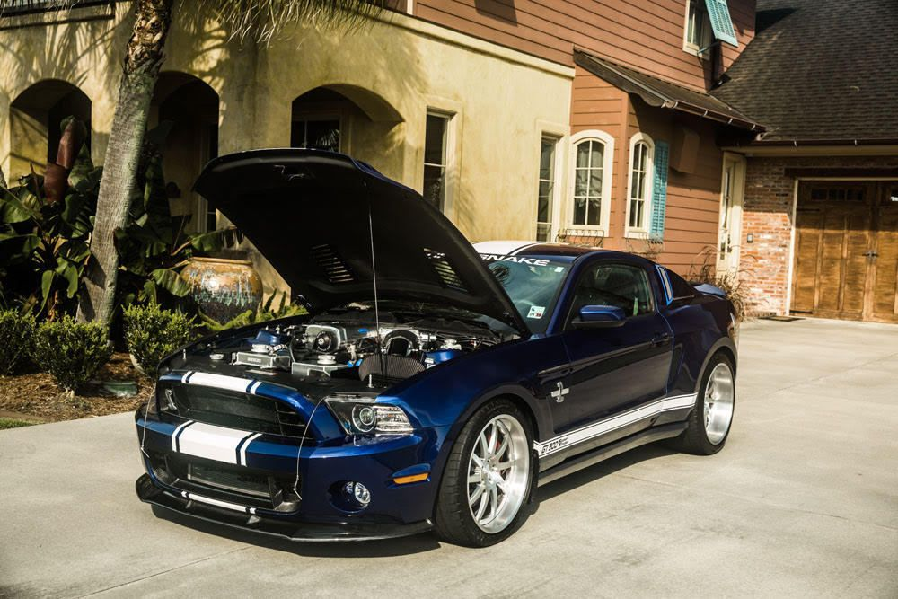 2014 Ford Mustang Shelby Gt500 Super Snake 900hp For Sale Cars