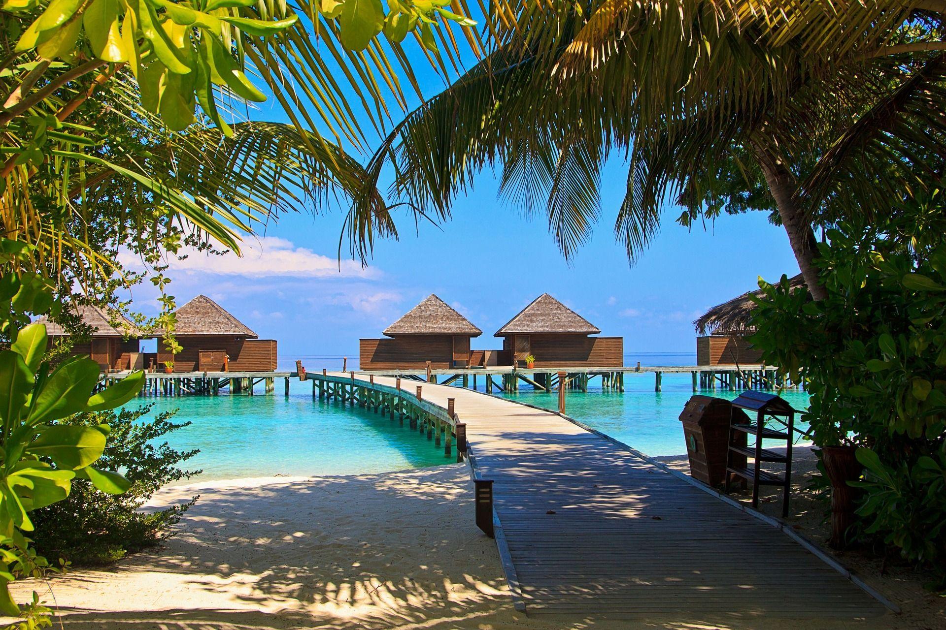 Ab Auf Die Malediven Paradise Urlaub Hochzeit Reisen Www