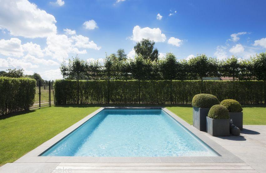 Monoblok buitenzwembad aanleggen in strakke tuin pool for Buitenzwembad aanleggen