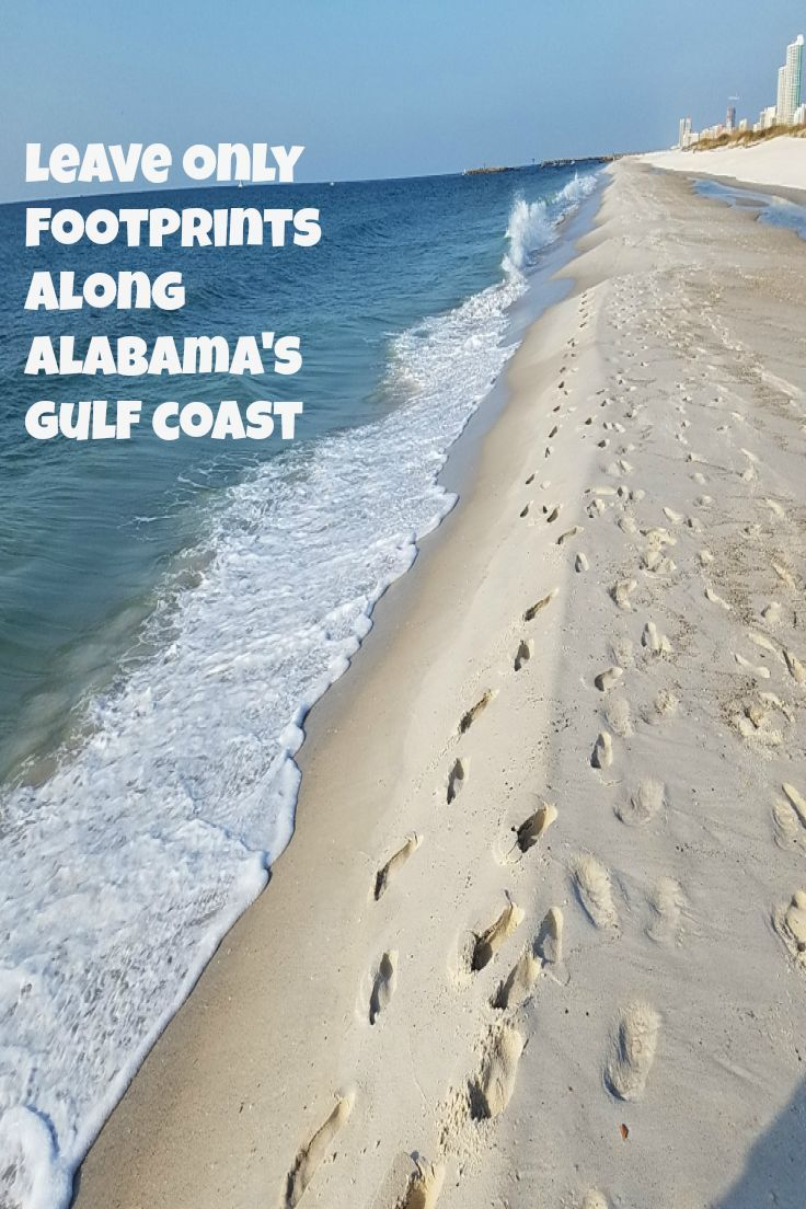 Leave only footprints along alabamas 32 miles of pristine