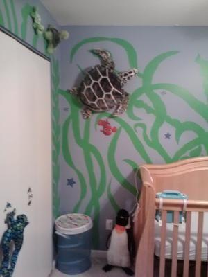 Sea Creature Nursery Ideas Marine Life Under The Theme