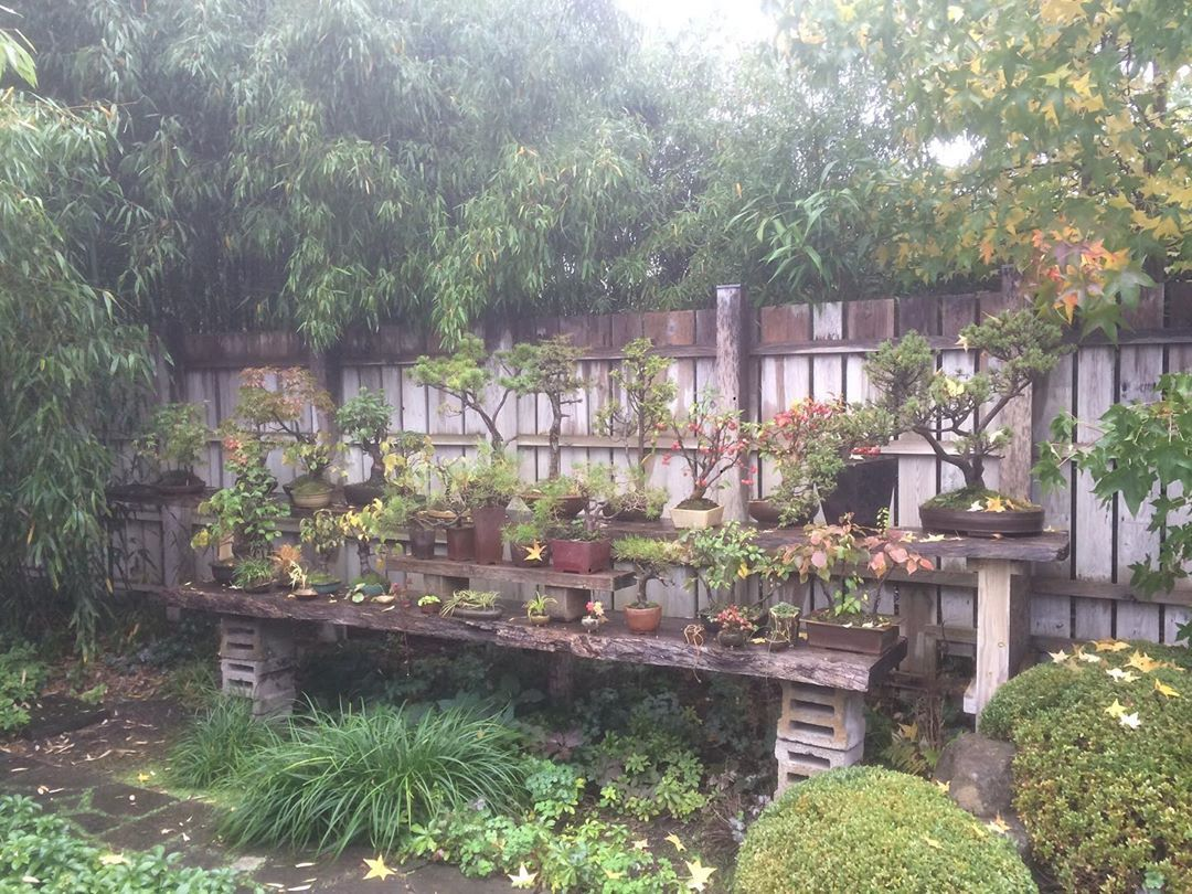 Stumbled Upon This Beautiful Japanese Garden In The Middle Of Nowhere Out In The Brandenburg Country Side Roji Japanische Gae Japanischer Garten Garten Japan