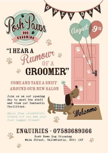Posh Paws Dog Grooming Salon Is A Lovely Friendly Clean And Modern Fresh New Salon Situated In Northumberl Dog Grooming Salons Dog Grooming Dog Grooming Shop