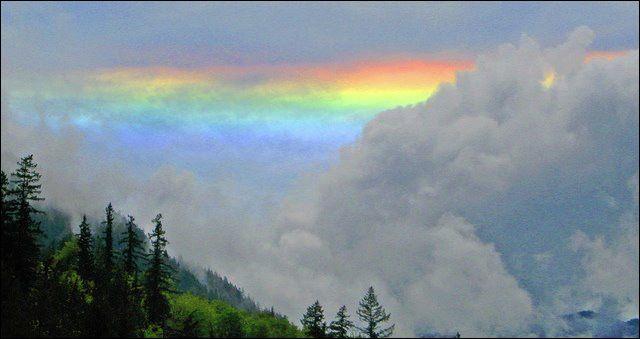 Fisheries worker captures 'fire' rainbow near Quilcene, Washington