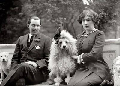 Victorian Poodle