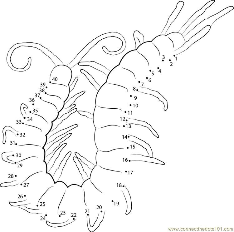 Centipede Connect Dots Pokemon Coloring Pages Dragon Coloring Page Dog Coloring Page