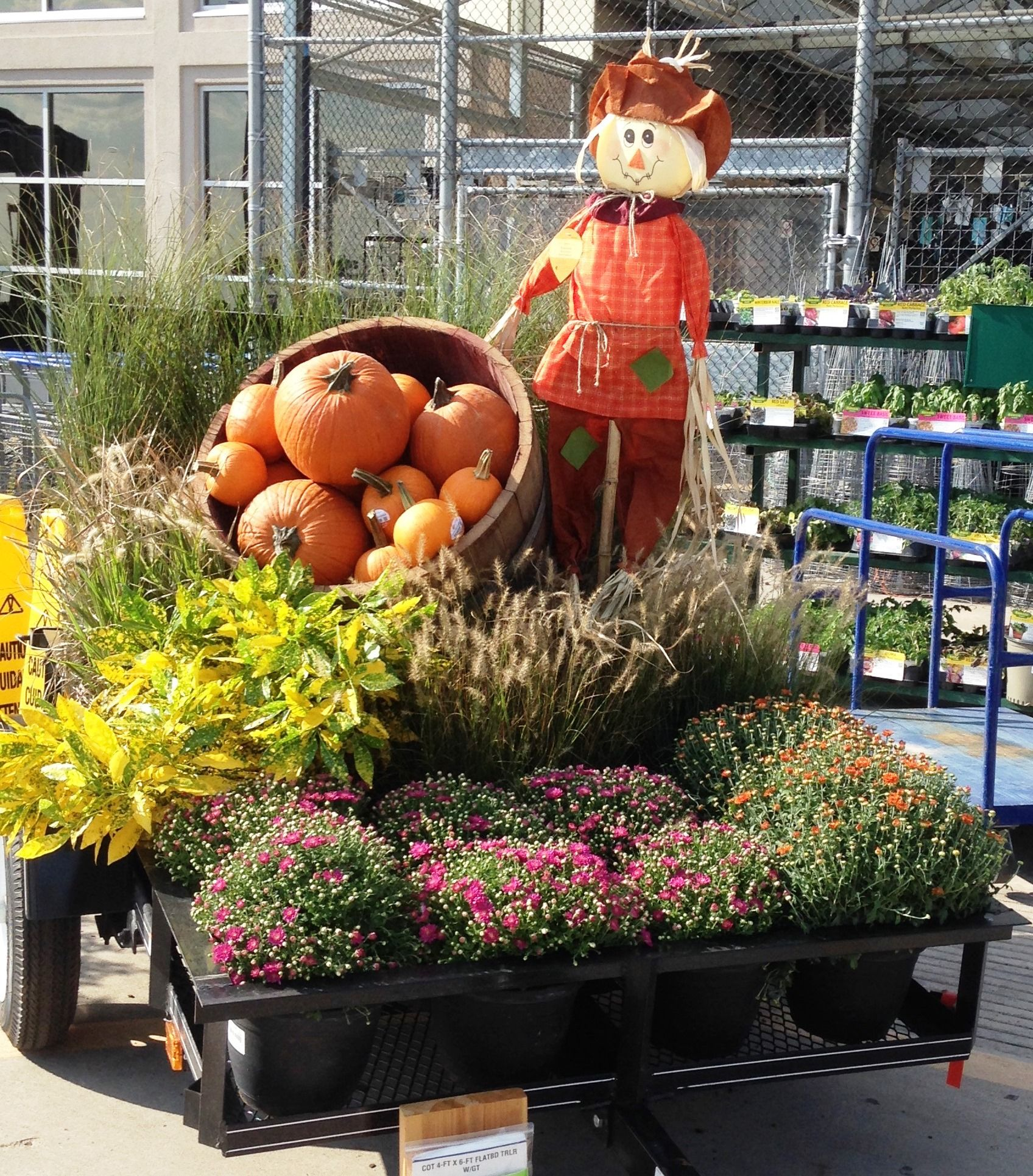 Lowe S 2962 In Odessa Tx With Images Garden Center Displays