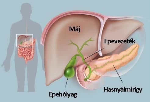 epehólyag gyógyítás