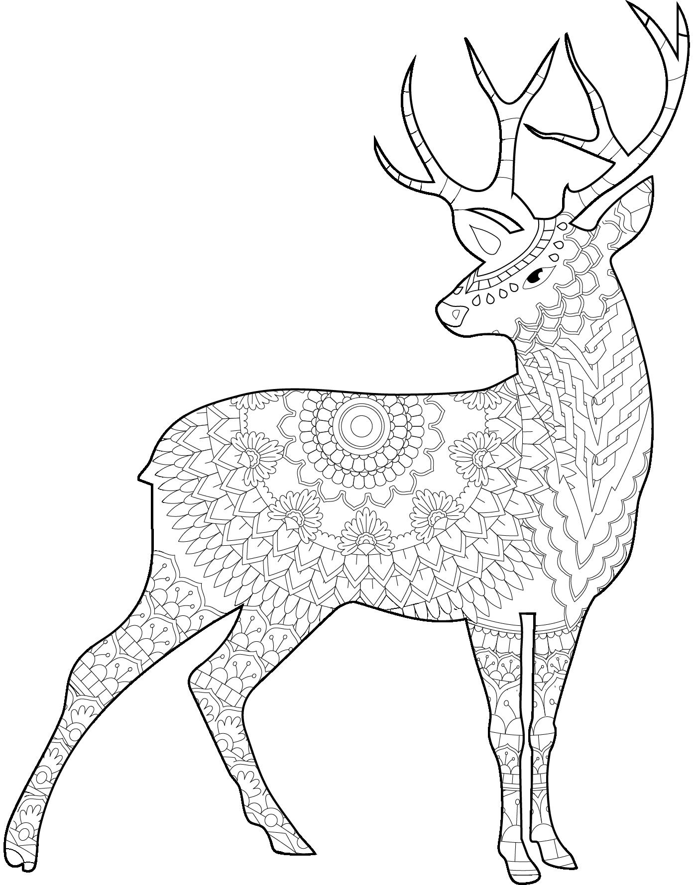 Mandala De Ciervo Para Imprimir Y Colorear Encuentra Más