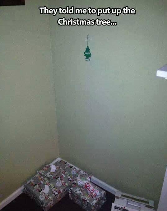 Bargain Christmas Trees