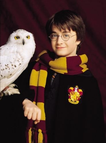 Harry Potter and Hedwig / Daniel Radcliffe in Harry Potter and the Philosopher's Stone