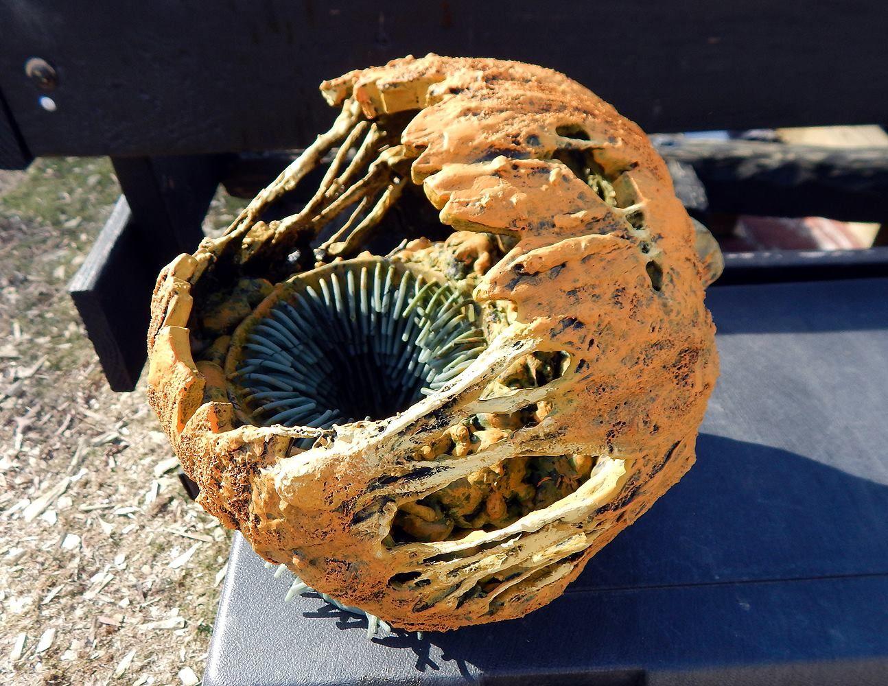 Rotten Pumpkin treat bowl prop by Halloween Forum member ...