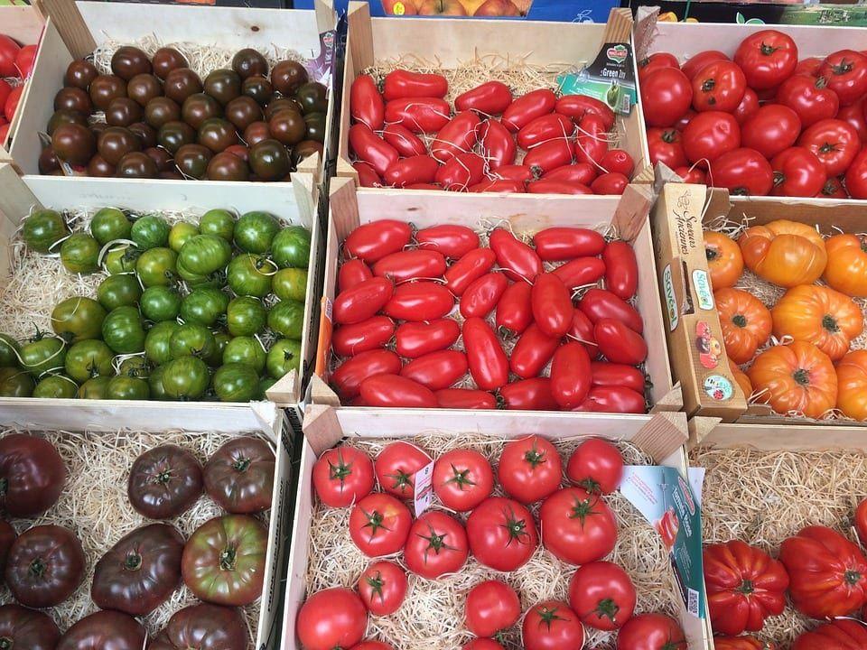 ᐅ Alle Tomatensorten Auf Einen Blick ᐅ Tomatensorten Tomaten Sorten Tomaten